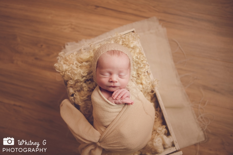Boston Newborn Photographer - Finn