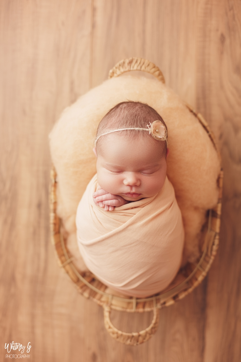 South End Newborn Photos