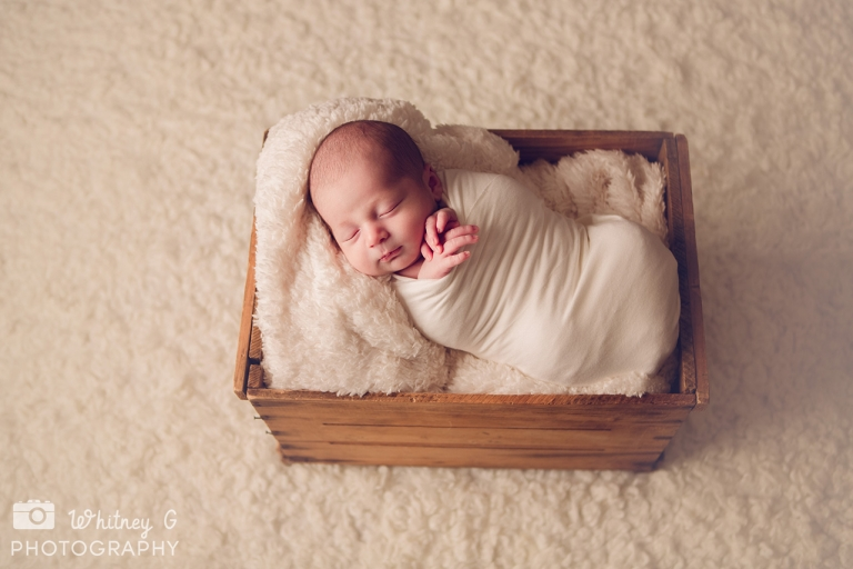 Boston Newborn Photographer - Boston Baby Photos