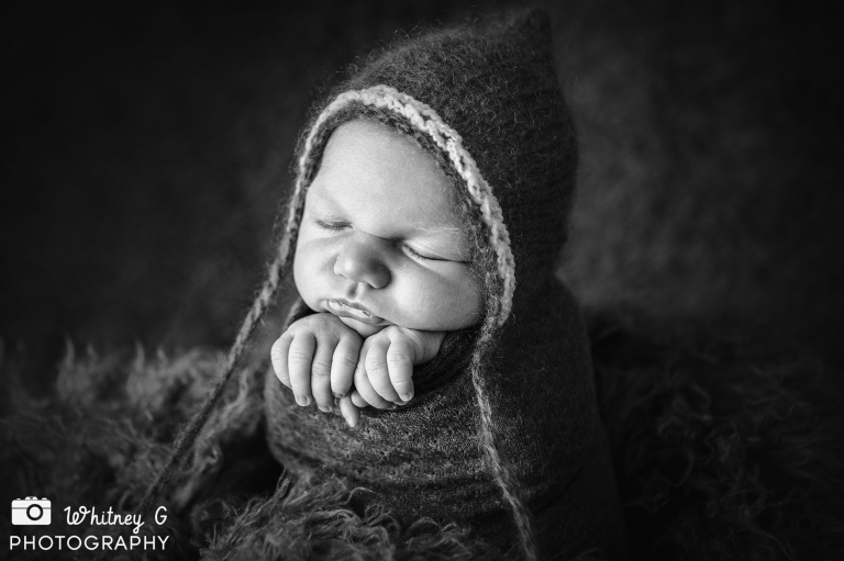 Newton Newborn Photos